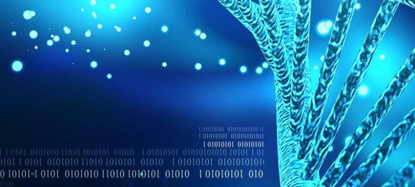 Et si l'avenir du stockage passait par l'ADN ? Microsoft y croit et avance à pas de géant!